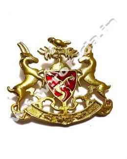 Bhati Cap Brooch ( Logos )