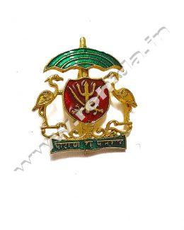 Solanki Cap Brooch ( Logos )