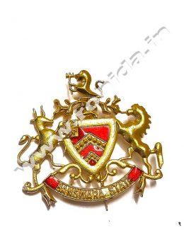 Banswara State Cap Brooch ( Logos )
