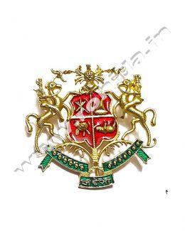 Jadeja Cap Brooch ( Logos )