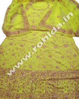 Light  Yellow Green colour  aari taari jarri work thakurji pyor odhna