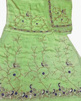 light green poshak beember saatan jardoji and salma hand work